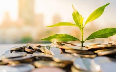 Fondos verdes: ¿Cómo saber si el producto que te han vendido respeta la sostenibilidad?