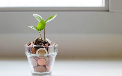 ¿Por qué debo poner mis finanzas en manos de un asesor financiero?